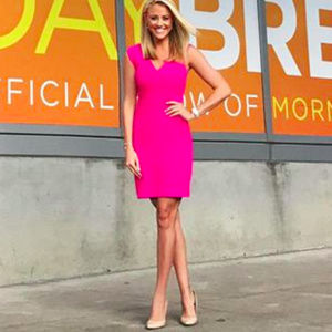 Banana Republic Pink Dress Work